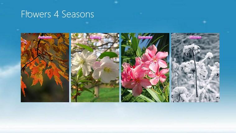 Fall Flowers The Flower Spot S Blog